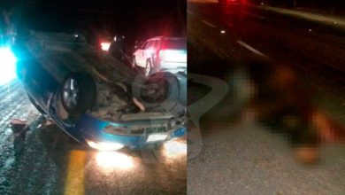Photo of #Morelia Vaca Muere Al Ser Atropellada Por Un Carro; Conductor Queda Herido