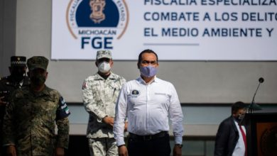 Photo of Fiscalía De Michoacán Investiga 120 Casos De Maltrato Animal: López Solís