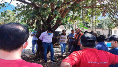 Photo of Pasa En México: Amarran A Alcalde A Un Árbol Por Entregar Obras Malhechas