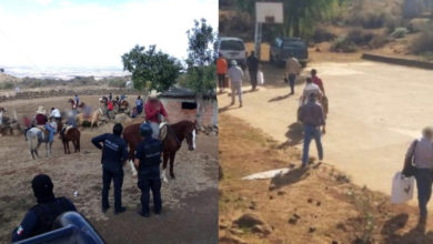 Photo of #Morelia Les Vale COVID-19 Y Arman Jaripeo Y Pelea De Gallos; Polis Lo Dispersan