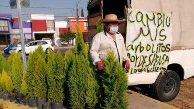 Photo of En México: Crisis Hace Que Don Cambie Sus Arbolitos Por Despensas