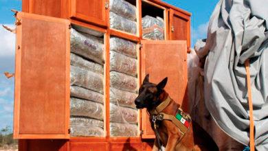 Photo of Elementos De La GN Fingen Mudanza Para Transportar Drogas; Ya Fueron Detenidos