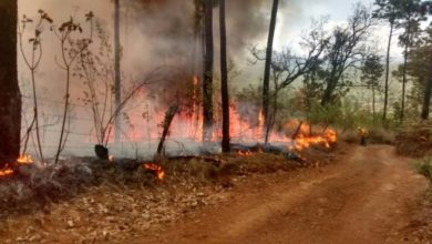 Photo of #Morelia Ante Temporada De Incendios Gobierno Busca Prevenirlos