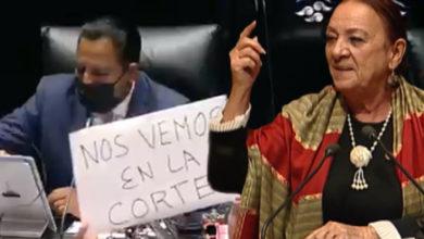"""Photo of """"¡Viva Andrés Manuel… Cabron3s!"""" Grita Senadora Morenista Al Aprobarse Reforma"""