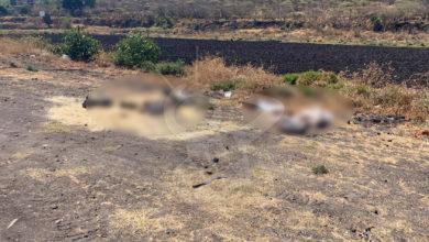 Photo of #Zamora Tiran Cuerpos Desmembrados En Costales En Orilla Carretera