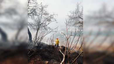 Photo of #Morelia Se Mantienen Combate VS Incendio En Loma De Santa María
